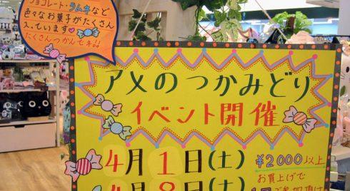 皆様、こんにちは。:.゚ヽ(´∀`。)ノ゚.:。+゚ ぴえろ三田店・スタッフのK・Fです♪  皆様、いよいよ春がやってきましたね゚(≧▽≦) 今年は少し寒い影響か、少し遅咲きになっているようで、 大阪・兵庫は […]