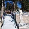 兵庫県三田市 三輪神社の正遷宮祭に行われた演芸大会の模様平成17年4月10日